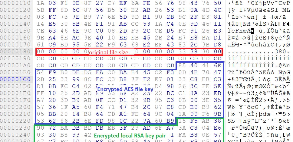 Rapid Ransomware - Encryption 6
