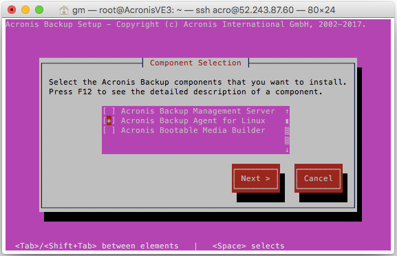 How to Install Acronis Backup 12.5 on a Linux VM