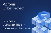 Business vulnerabilities in more ways than one